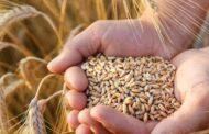 Çiftçilere Ödenen Mazot, Gübre, Tohum Desteğinden Gelir Vergisi Kesintisi (Stopaj) Yapılır Mı?